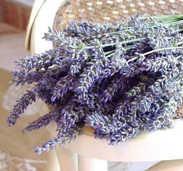 How to make homemade lavender oil - Step 2